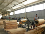 Process of veneer production
